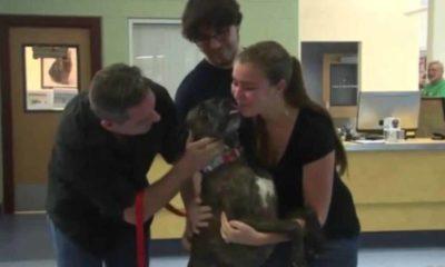 goldstone family reunites with dog 1