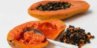 papaya-2_opt