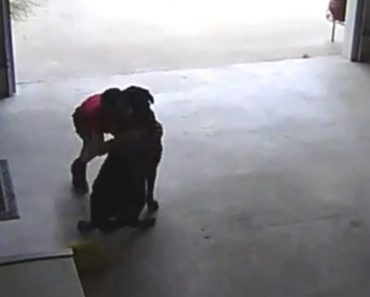 Homeowner Discovers Boy Sneaking into Garage to Hug Their Dog