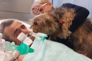 Man Wakes Up from Coma after Pet Dog's Visit