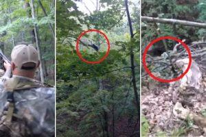 Bear Plays Dead after Getting Shot, Attacks Hunter Afterwards