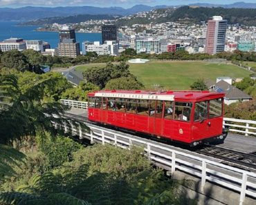 100 Tech Jobs in New Zealand Up for Grabs, Free Trip Included