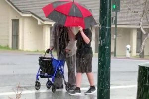 Teen Goes Viral for Rushing to Help an Old Man during a Sudden Hailstorm