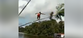 Video of Guys Accidentally Cutting Trees While Having Fun Angers Netizens