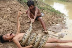 These Kids Go Viral for Catching Large Snake with Bare Hands