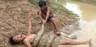 kids snake