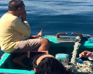 Black Butterfly Appears in Front of Cousin Searching for Mayor Dumped by Husband at Sea