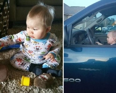 This Boy's Pet and Best Friend is a Duck He Got as a Baby