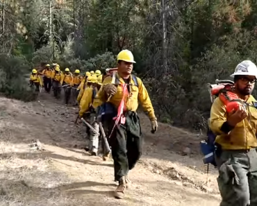 Firefighters' Spine-Tingling Song after Surviving California Wildfire Goes Viral
