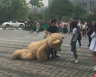 Rich Guy Courts Girl with $1,500 Teddy Bear, But Girl Only Wants the Bear