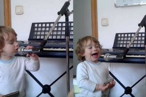 Blues Toddler-Singer Melts Hearts As He Belts Out With Baby Talk