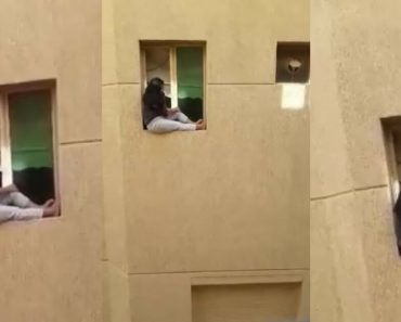 Lonely Filipina Worker In Kuwait Sits On The Edge Of A Window In Their High-Rise Apartment Building
