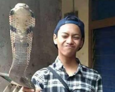 Dying Boy Asks Help from Online Friends after Getting Bitten by Pet Cobra