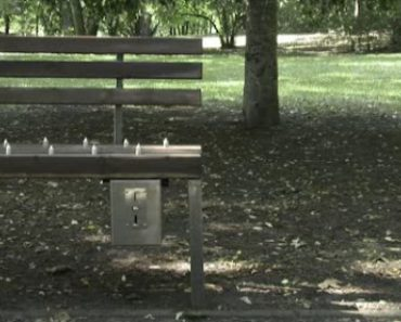 """Anti-Homeless """"Pay-and-Sit"""" Park Bench with Spikes Receives Mixed Reactions from Netizens"""