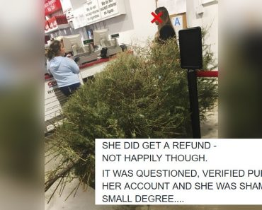 """Netizens Express Disbelief after Woman Returns Christmas Tree in January Because """"It is Dead"""""""