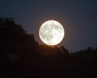 """Rare Occurrence of """"Super Blue Blood Moon"""" Coming Up, Netizens Feel Worried about Possible Disasters"""