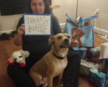 A Woman Asked What She Can Feed Her Dog And Got Big Bags Of Dog Food Instead