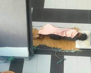 Abused Domestic Worker Dies after Sleeping in Car Porch with Employer's Dog for a Month