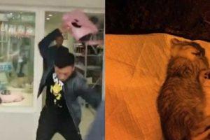 Heartbroken Man Slams Kitten On The Floor Repeatedly When He Was Denied A Full Refund