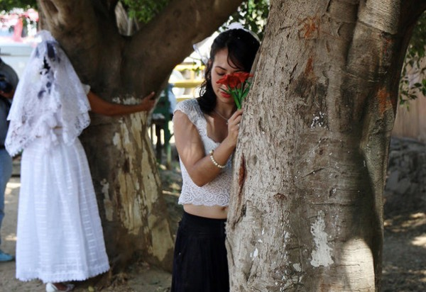 These brides want to raise awareness on illegal logging. [Image Credit: RT / Youtube]