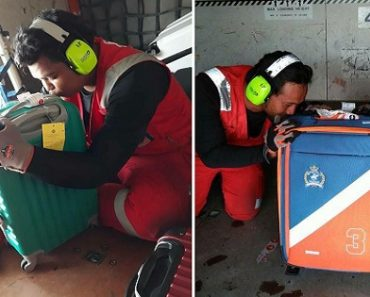 AirAsia Staff Kisses Luggage, Gets Mixed Reactions from Surprised Netizens