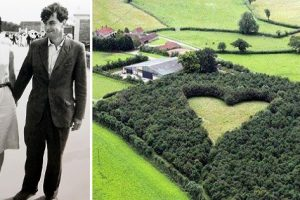 Husband Plants 6,000 Trees to Honor Late Wife, Impressive Photos Appear 15 Years Later