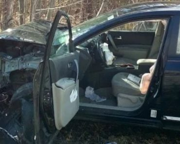 Woman Suffers Leg Injury, Wrecks Car after Seeing Spider While Driving