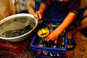 Caught on Camera: Dirty Factory Making Fake Pepsi Products