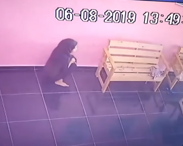 CCTV Catches Teenage Girl Peeing in Laundromat Floor, Even if CRs are Nearby