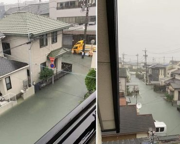 Pool-Like Flood Waters in Japan Impress Netizens, No Trash to See in the Streets