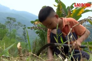 10-Year-Old Orphan Kid Grows Vegetables to Support Self After Losing Entire Family