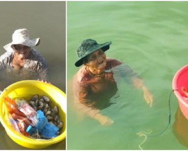 Grandma Spends Hours in Seawater to Sell Seafoods to Support Mentally Ill Daughter