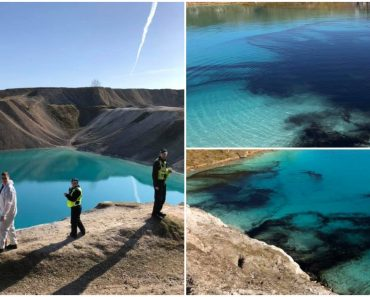 Police Dye Blue Lagoon Because People Kept Going Even with COVID-19 Pandemic