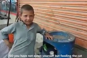 Poor in Money but Rich in Heart, Kid Feeds Cat Even If He Didn't Have Any Food