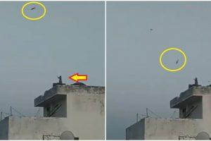 Video of Monkey 'Flying' a Kite Goes Viral, Netizens Joke It's Like 'Planet of the Apes'