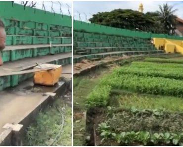 Farmer Converts Nearby Pro Football Field into Farm, Shocks Stadium Management