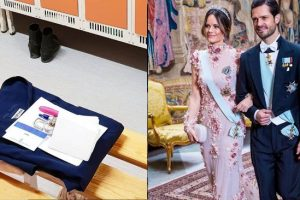 Sweden's Princess Sofia Volunteers as Medical Assistant in COVID-19 Frontlines