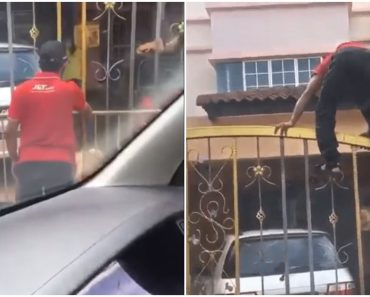 Delivery Man Climbs Gate After Getting Chased by Dog