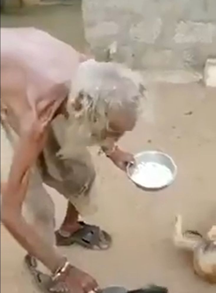 beggar feeding stray dogs