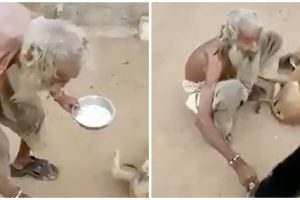 Skin-and-Bones Beggar Goes Viral after Video Shows Him Feeding Stray Dogs