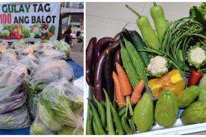 Farmer Sells Affordable Vegetable Packs for Just Php100 Each