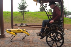 Impressive Video of Rickshaw Being Driven by Robot Goes Viral