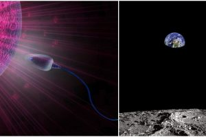 Scientists to Send Sperm and Egg Samples to the Moon as Safeguard against Extinction