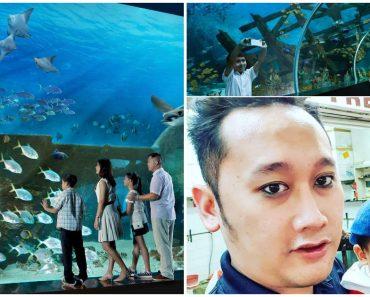 Dad Brings Son to Fish Market after Boy Asked to Visit Sentosa Aquarium