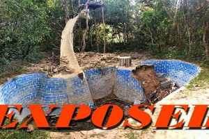 "New Owner, Shocked to Find Forest Damaged by ""Primitive"" Survival Builders"